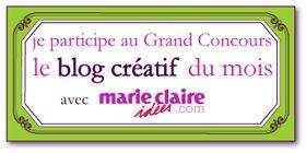 petiteetiqparticipationblogcreati