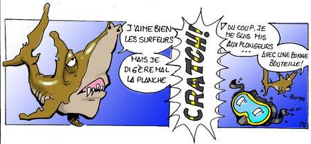 Requins___Plongeurs_copie