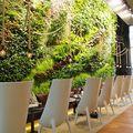Café vert à river park