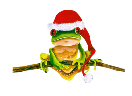 grenouille-noel