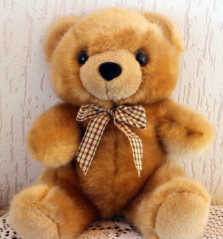 teddy-424630_1280
