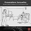 Provocations sensuelles - présentation succincte