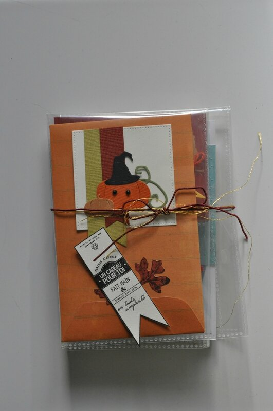 pocket letter de dany little scrap swap automne 2015