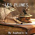 Les plumes...by asphodèle: chant du cygne