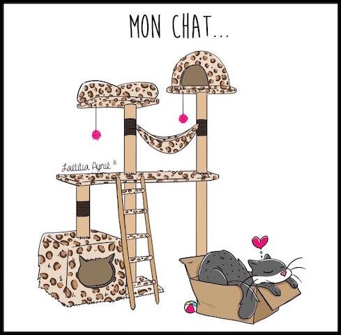 chat carton