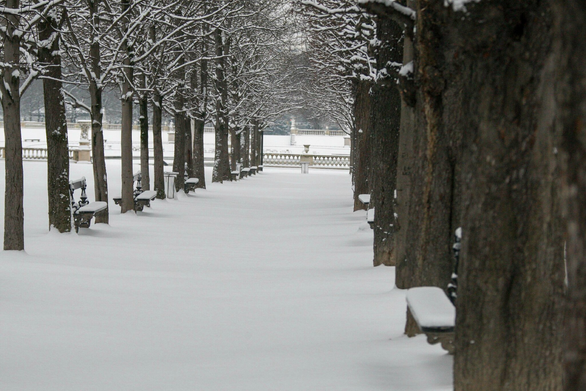 Paris sous la neige. © Photo Michel Stoupak. Sam 19.01.2013, 09:24.
