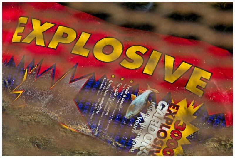 ville poche explosive poisson 092016
