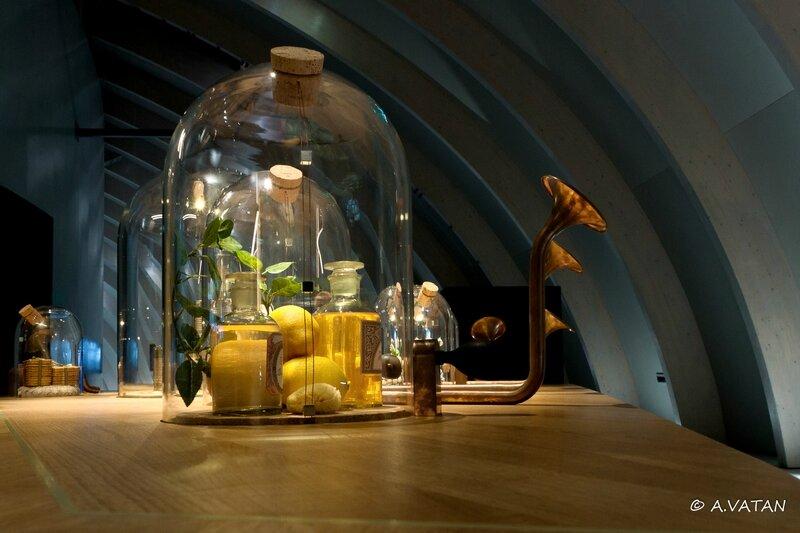 Musée du vin-3037
