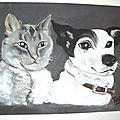 Ma chienne et mon chat