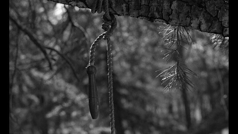 vlcsnap-2014-05-08-11h22m36s60
