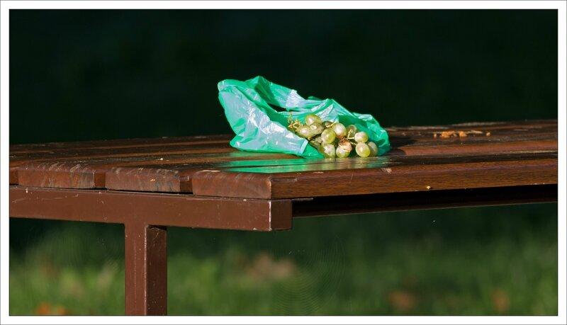 ville raisin table poche verte 210915 3