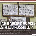2011-11-04 Citron pressé (Copier)