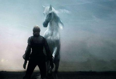Un_cheval_rien_qu___moi_