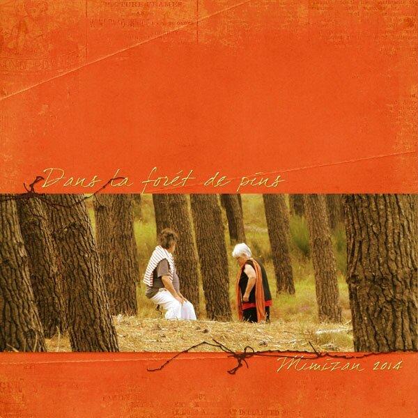 14-07 dans la forêt de pins
