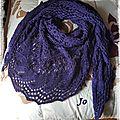 juneberry bleu violet (1)