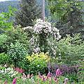 Le jardin début juillet