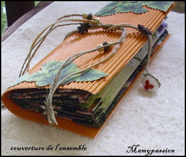 mini accordéon 091forum blog
