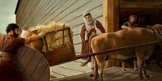 Noah-reserve de paille pouur l'Arche
