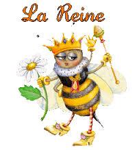 abeille reine