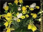 bouquet_fleurs