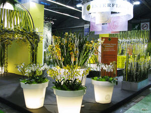 9_Stand_Interflora