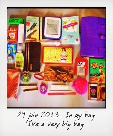 29-in my bag_instant