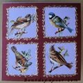 2006 - oiseaux