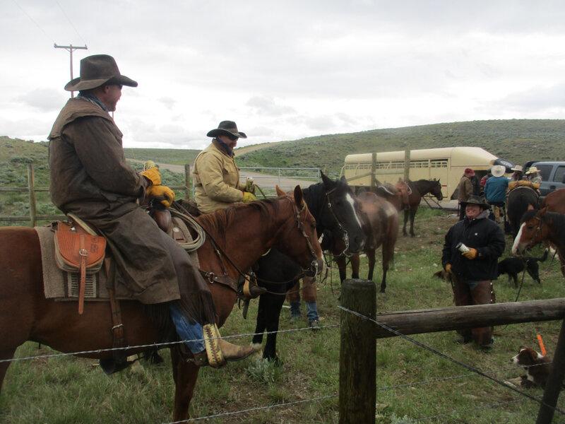 IMG_1341 les vrais et le bétail (3)