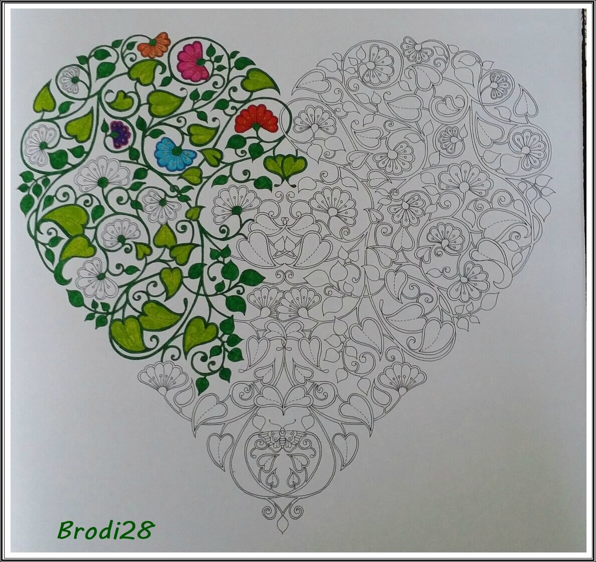 Coloriages pour adultes jardin secret images for O jardin secret suresnes