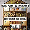 Constuire une maison à insectes