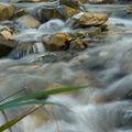 L'eau en mouvement...