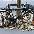 vélo automne_5705