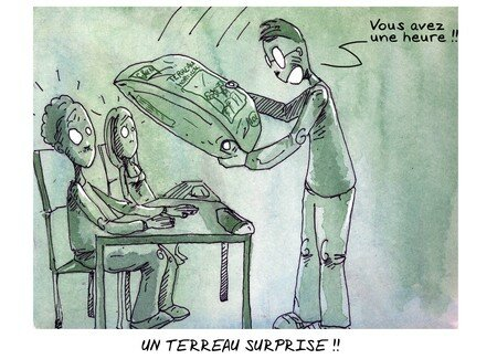 terreau_surprise_copie