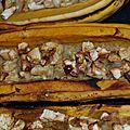 Courge délicata farcie au céleri rave, curry sri lankais, échalotes et crème de riz, sans gluten ni produits laitiers