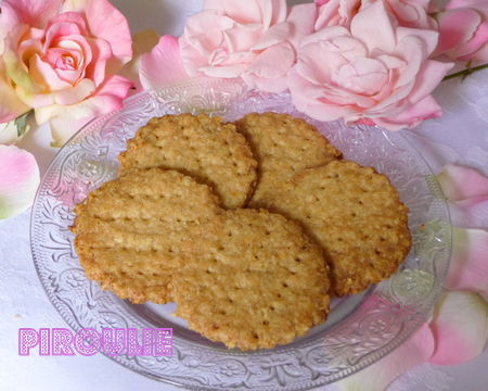 digestive_biscuit__3_