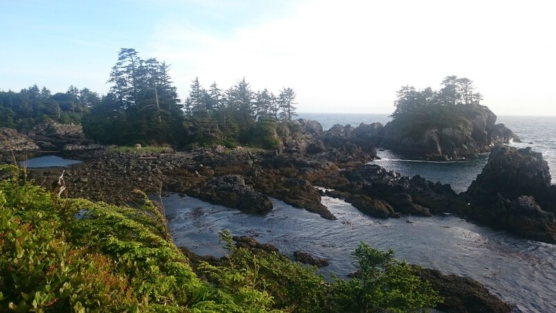 Wild Pacific Trail .. Lighthouse Loop 111448780