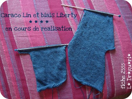 DSCN9780_en_cours_tricot