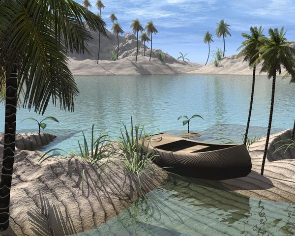 paysage 6