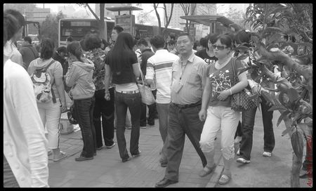 Beijing_travellings_de_vies_zoo_00