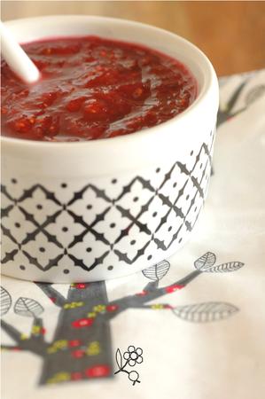 Chutney rhubarbe-framboise-gingembre-menthe_3