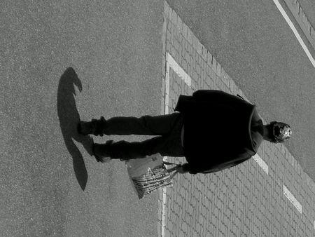 Dans_l_ombre_du_corbeau