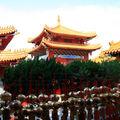 temple et voeux