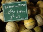 melons_1__1000