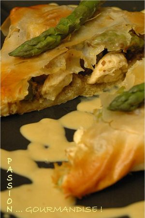 Filo_poulet_marron_asperge_morille_2