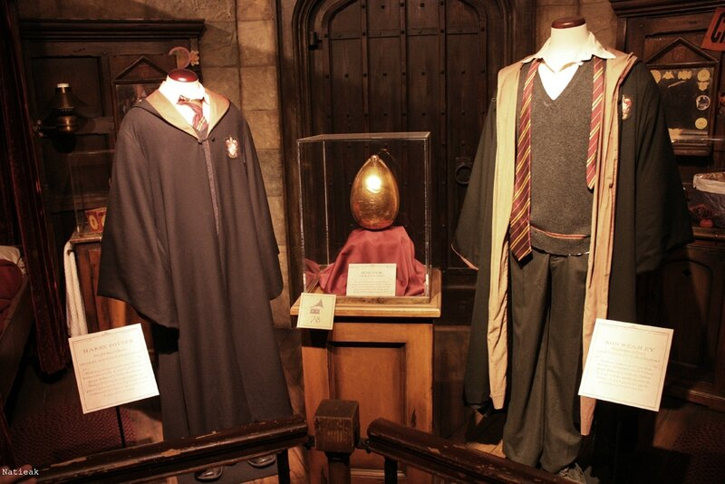 Costume Harry et Ron Expo Harry Potter