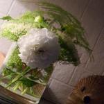 a a a fleurs