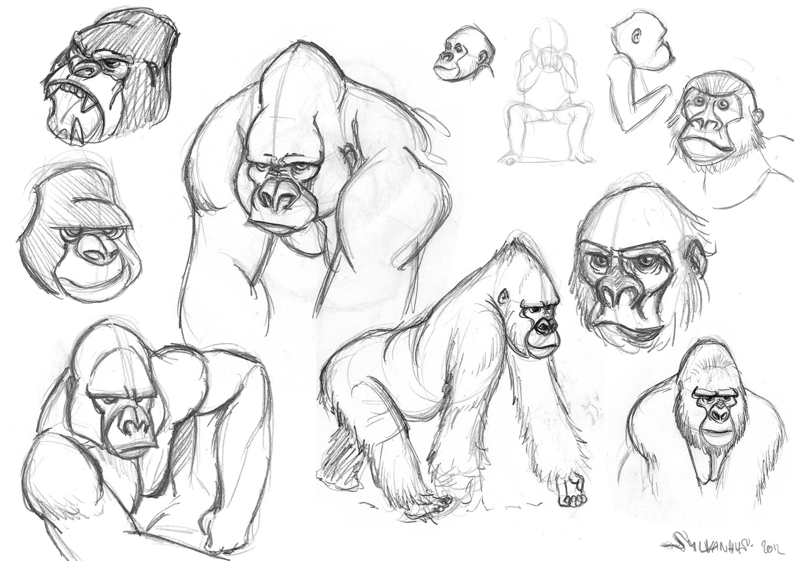 gorilla drawing