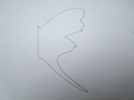 papillons 012