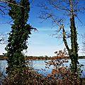 Lac Arjuzanx 05021616