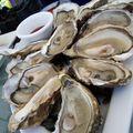 huîtres charentaises